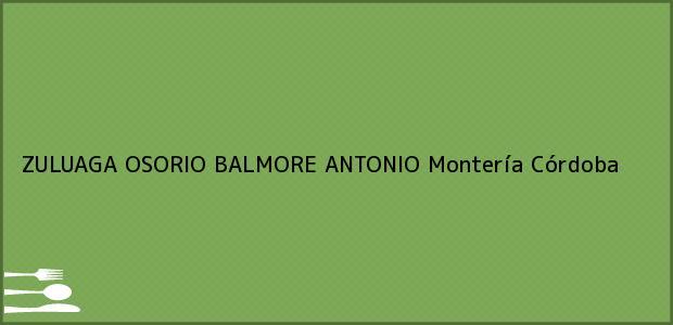 Teléfono, Dirección y otros datos de contacto para ZULUAGA OSORIO BALMORE ANTONIO, Montería, Córdoba, Colombia