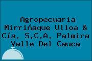 Agropecuaria Mirriñaque Ulloa & Cía. S.C.A. Palmira Valle Del Cauca