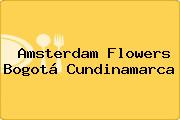 Amsterdam Flowers Bogotá Cundinamarca