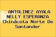 ANTOLINEZ AYALA NELLY ESPERANZA Chinácota Norte De Santander