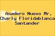 Asadero Nuevo Mr. Charly Floridablanca Santander