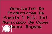 Asociacion De Productores De Panela Y Miel Del Municipio De Coper Coper Boyacá