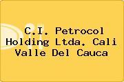 C.I. Petrocol Holding Ltda. Cali Valle Del Cauca