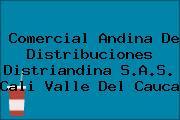 Comercial Andina De Distribuciones Distriandina S.A.S. Cali Valle Del Cauca