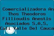 Comercializadora An Thos Theodoros Fillioudis Anestis Asociados S.A.S. Cali Valle Del Cauca