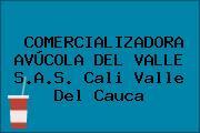 COMERCIALIZADORA AVÚCOLA DEL VALLE S.A.S. Cali Valle Del Cauca