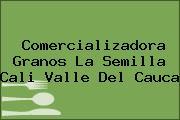 Comercializadora Granos La Semilla Cali Valle Del Cauca