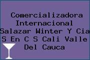Comercializadora Internacional Salazar Winter Y Cia S En C S Cali Valle Del Cauca