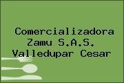 Comercializadora Zamu S.A.S. Valledupar Cesar