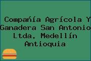 Compañía Agrícola Y Ganadera San Antonio Ltda. Medellín Antioquia