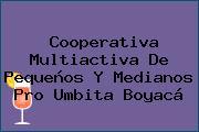 Cooperativa Multiactiva De Pequeños Y Medianos Pro Umbita Boyacá