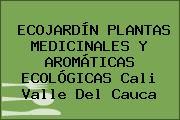 ECOJARDÍN PLANTAS MEDICINALES Y AROMÁTICAS ECOLÓGICAS Cali Valle Del Cauca
