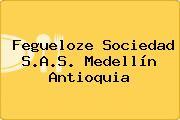 Fegueloze Sociedad S.A.S. Medellín Antioquia