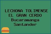 LECHONA TOLIMENSE EL GRAN CERDO Bucaramanga Santander