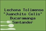 Lechona Tolimense