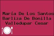 María De Los Santos Barliza De Bonilla Valledupar Cesar