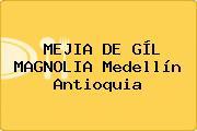 MEJIA DE GÍL MAGNOLIA Medellín Antioquia