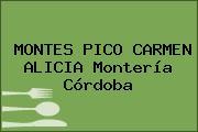 MONTES PICO CARMEN ALICIA Montería Córdoba
