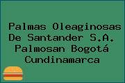 Palmas Oleaginosas De Santander S.A. Palmosan Bogotá Cundinamarca