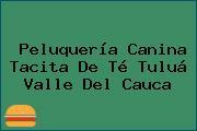 Peluquería Canina Tacita De Té Tuluá Valle Del Cauca