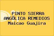 PINTO SIERRA ANGÕLICA REMEDIOS Maicao Guajira