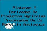 Platanos Y Derivados De Productos Agrícolas Procesados De Co Medellín Antioquia