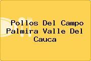 Pollos Del Campo Palmira Valle Del Cauca