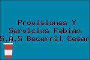 Provisiones Y Servicios Fabian S.A.S Becerril Cesar