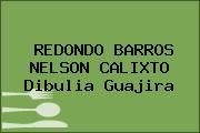 REDONDO BARROS NELSON CALIXTO Dibulia Guajira