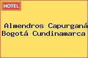 ALMENDROS CAPURGANÁ . Bogotá Cundinamarca