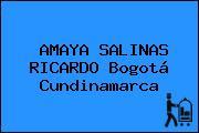 AMAYA SALINAS RICARDO Bogotá Cundinamarca