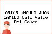 ARIAS ANGULO JUAN CAMILO Cali Valle Del Cauca