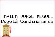 AVILA JORGE MIGUEL Bogotá Cundinamarca