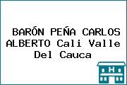 BARÓN PEÑA CARLOS ALBERTO Cali Valle Del Cauca