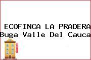 ECOFINCA LA PRADERA Buga Valle Del Cauca