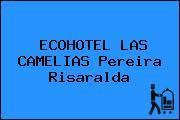 ECOHOTEL LAS CAMELIAS Pereira Risaralda