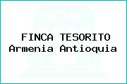 FINCA TESORITO Armenia Antioquia