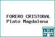 FORERO CRISTOBAL Plato Magdalena