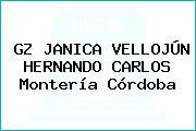GZ JANICA VELLOJÚN HERNANDO CARLOS Montería Córdoba