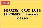 HERRERA CRUZ LUIS FERNANDO Flandes Tolima