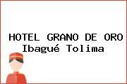 HOTEL GRANO DE ORO Ibagué Tolima