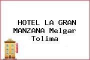 HOTEL LA GRAN MANZANA Melgar Tolima