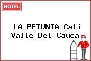 LA PETUNIA Cali Valle Del Cauca