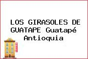 LOS GIRASOLES DE GUATAPE Guatapé Antioquia