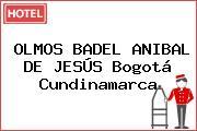 OLMOS BADEL ANIBAL DE JESÚS Bogotá Cundinamarca