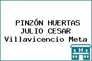 PINZÓN HUERTAS JULIO CESAR Villavicencio Meta