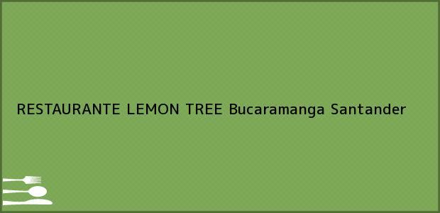 Teléfono, Dirección y otros datos de contacto para RESTAURANTE LEMON TREE, Bucaramanga, Santander, Colombia