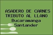 ASADERO DE CARNES TRIBUTO AL LLANO Bucaramanga Santander