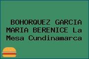 BOHORQUEZ GARCIA MARIA BERENICE La Mesa Cundinamarca