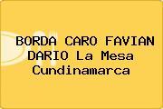 BORDA CARO FAVIAN DARIO La Mesa Cundinamarca